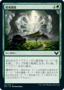 画像1: 【STX】 現地調査/Field Trip 【日:C】 (1)